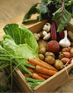root-cellar-vegetables-hm-lg